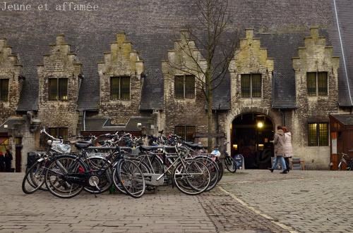Des vélos partout en ville