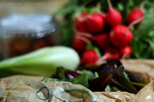 ingrédients : fenouil, salade, radis