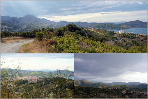 Banyuls-sur-Mer, Pyrénées Orientales