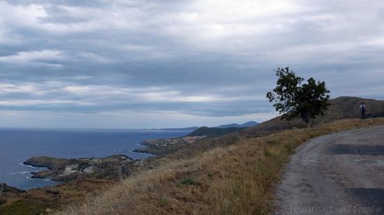 Vue sur Cerbère depuis les hauteurs de Banyuls