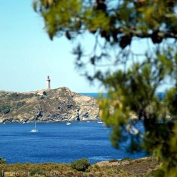 Le phare du cap Béar