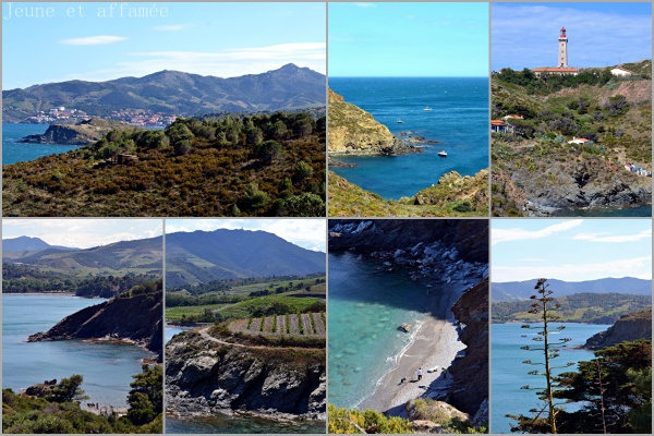 Sentier littoral, Paulilles-Port Vendres