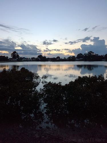 Lever de soleil à Waiwera