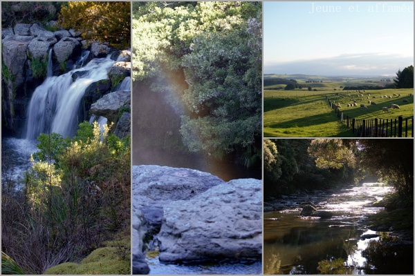 Une cascade secrète près de Matauri