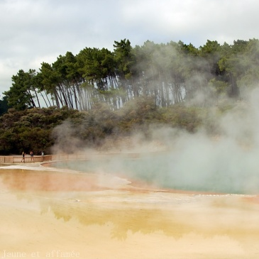 Wai-o-Tapu, North Island, New-Zealand