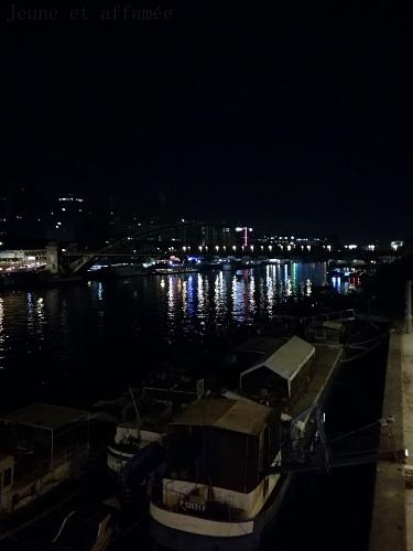 Vue sur la Seine de nuit