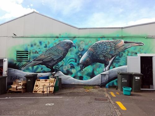 Street art dans les rues de Taupo