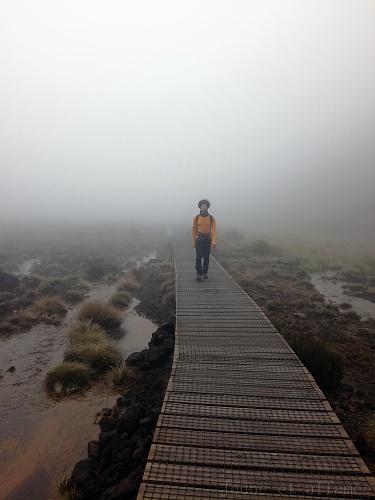 Sentier de randonnée Nouvelle-Zélande