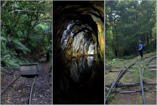 Wairongomai gold mines