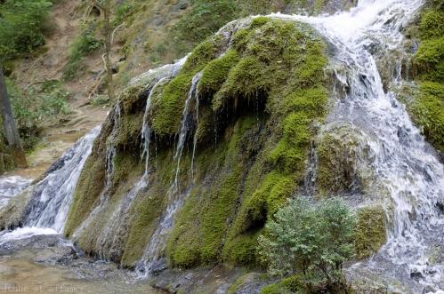 Cascade pétrifiante de Roquefort
