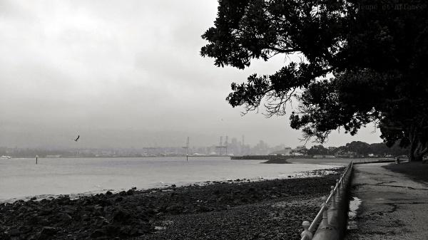 Vue du port d'Auckland sous la pluie depuis Devonport