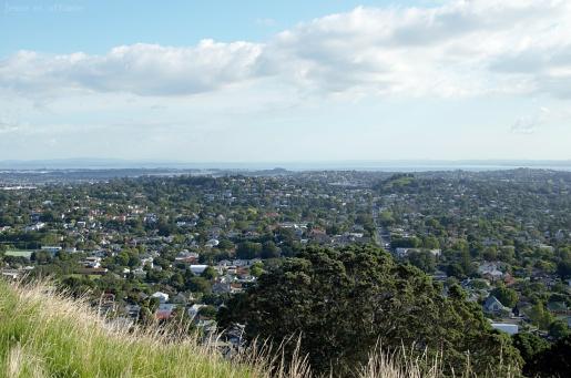 Auckland vue du Mont Eden