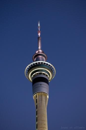 La sky tower, Auckland