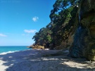 Coromandel, Nouvelle Zélande