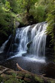 Waipohatu walk et ses cascades