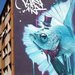 Street-art sur les murs de la Croix-Rousse