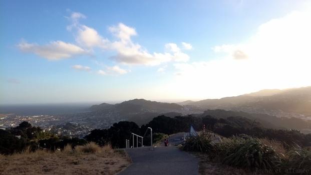 Wellington : vue imprenable sur la ville depuis le Mont Victoria