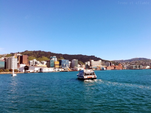 Le port de plaisance de Wellington