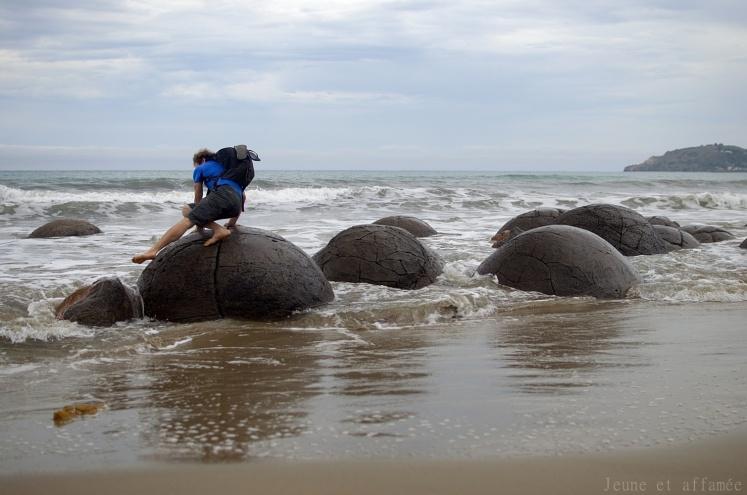 Moeraki boulders, New-Zealand