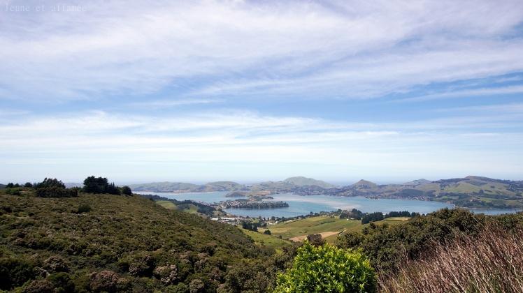 Vue sur Otago peninsula