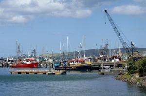 Petit port de pêche de Port-Chalmers, Otago, Nouvelle-Zélande