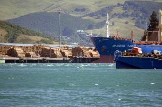 Grumes et gros bateau dans le port de commerce de Port-Chalmers, Nouvelle-Zélande