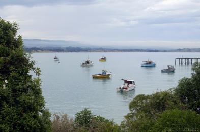 Le petit port de Moeraki, Nouvelle-Zélande