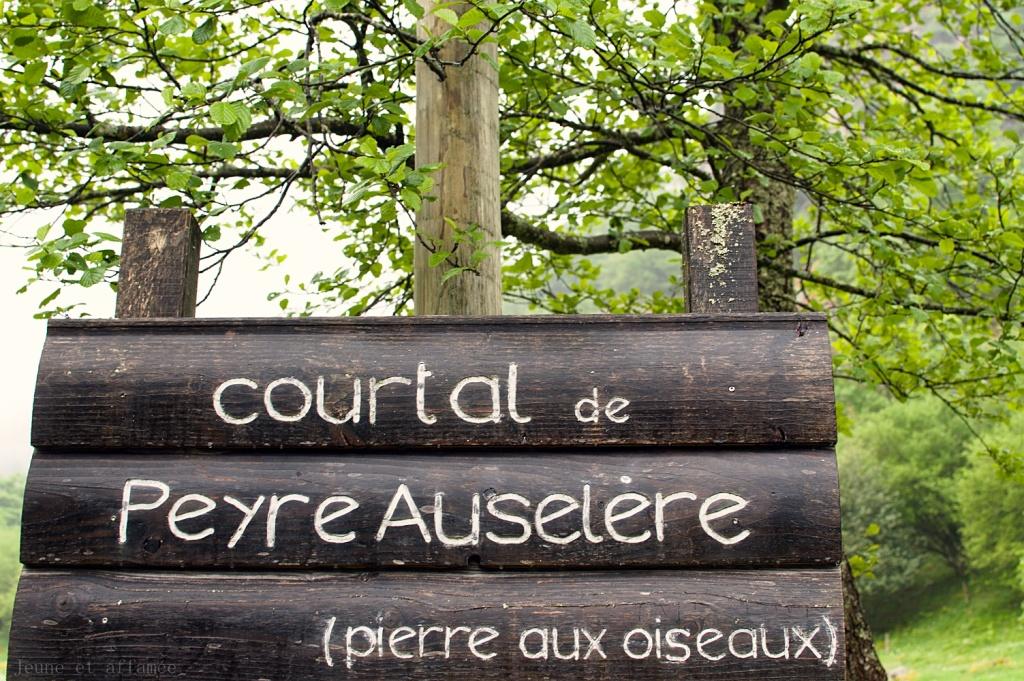 Le village d'estive de Peyre auselère (panneau)