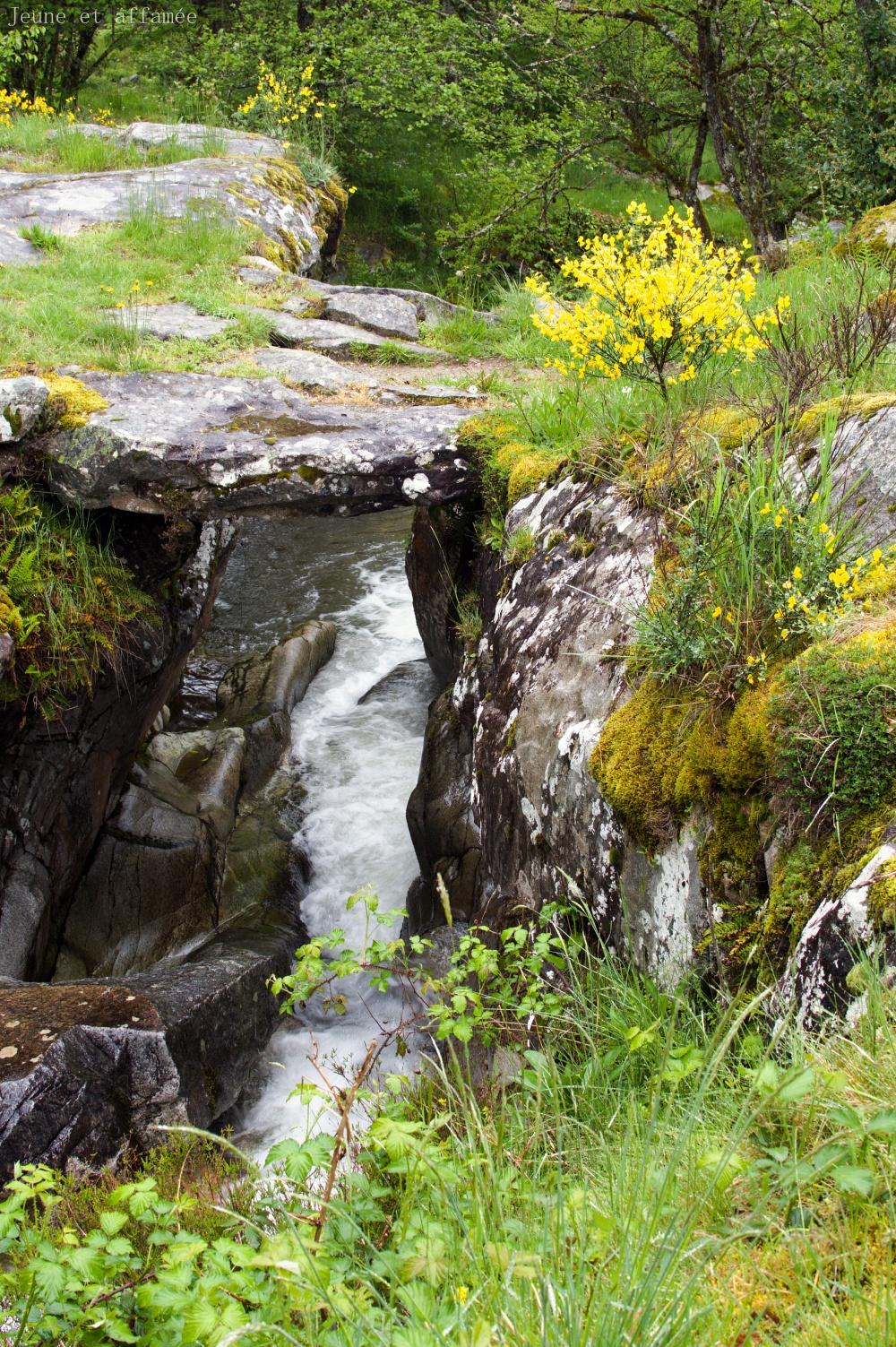 Pont en pierre rustique