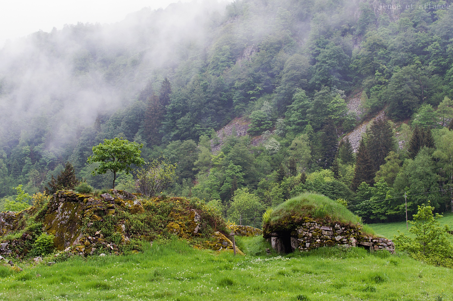 Cabane en pierre, dans le brouillard