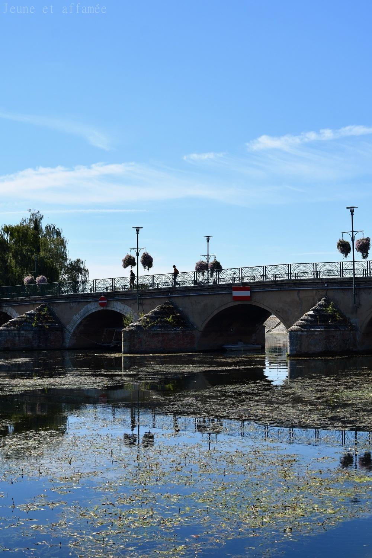 Pont, Vierzon