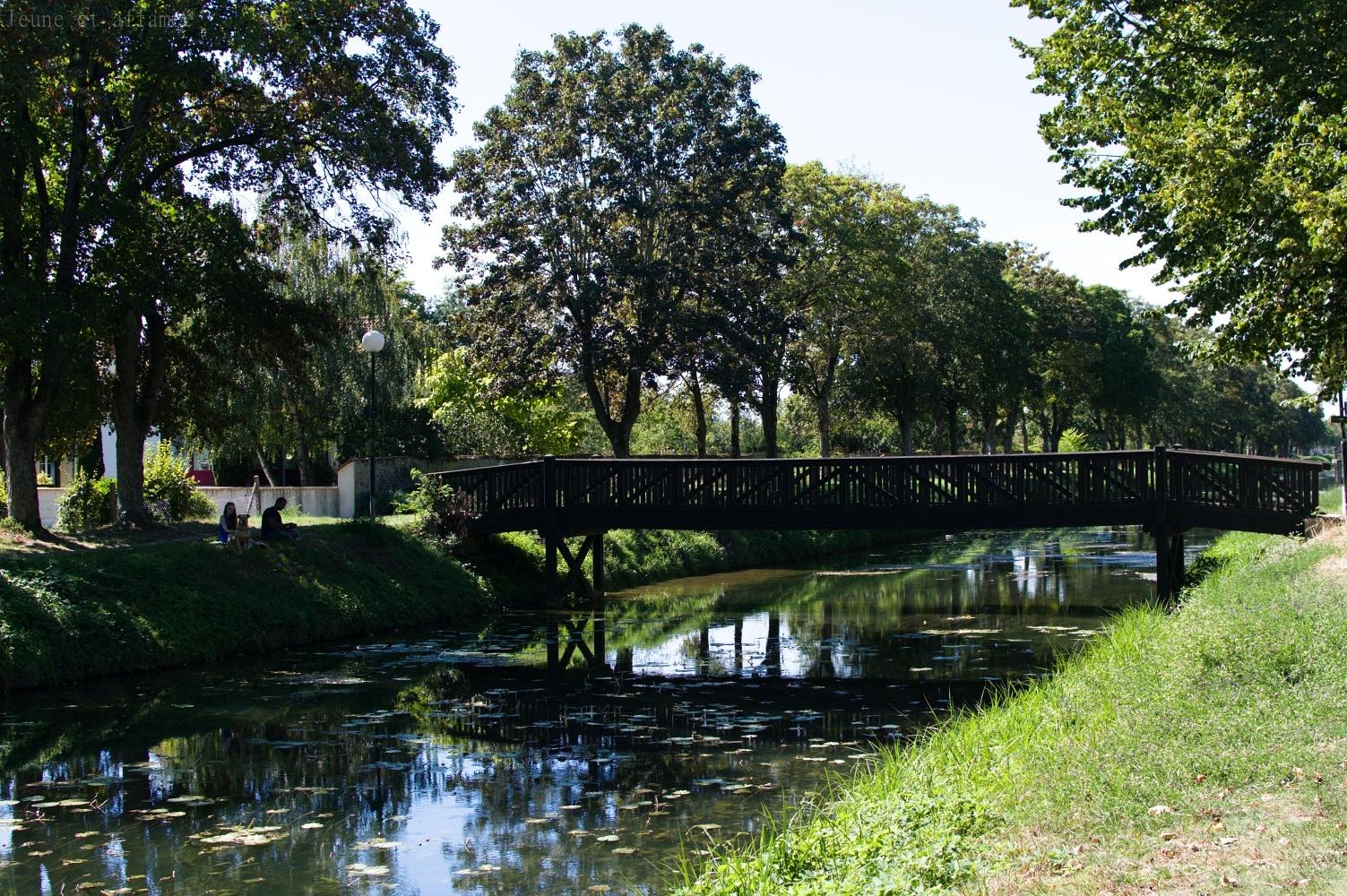 Balade à l'ombre le long du canal du Berry